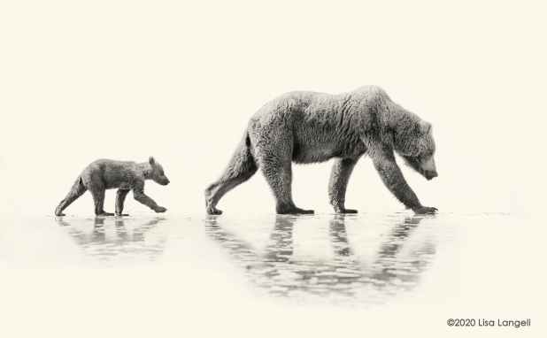 Two Bears _Lisa Langell